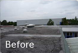 Before singleply is applied
